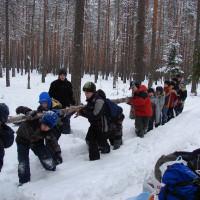 п. Комарово (февраль)